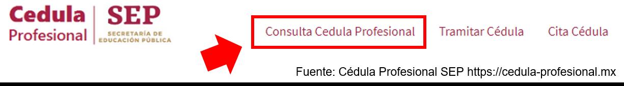 Consulta De Cedula Profesional Por Nombre